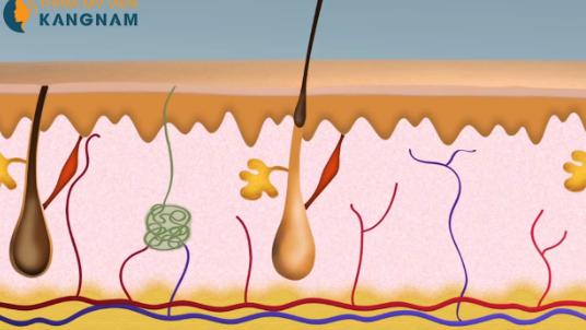 Trị viêm nang lông có giúp thu nhỏ lỗ chân lông không?2